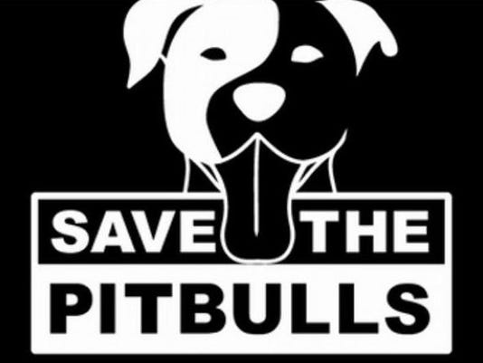 save-the-pit-bulls.jpg