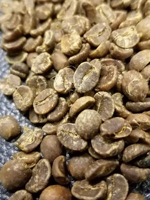 Wade has her Brazilian beans specially decaffeinated with a process using only water that results in a dark bean with exceptional flavor.