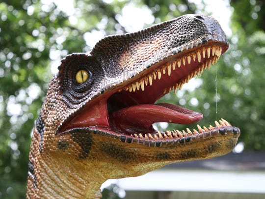 A velociraptor in Allouez resident Jim Brisbane's yard at the corner of MacArthur Street and Kalb Avenue.