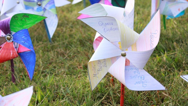 Students set up pinwheels celebrating the International Day of Peace.