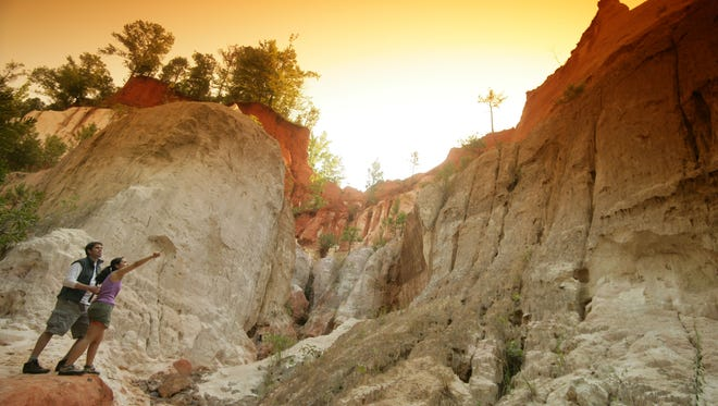 """Georgia - Known as Georgia's """"Little Grand Canyon,"""" Providence Canyon has soil filled with pink, orange, red and purple hues that make a beautiful natural painting."""