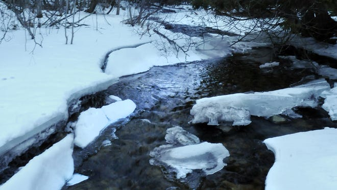 Unlike last winter when water levels were dangerously low or non-existent in small creeks like the Shivering Sands Creek near Sevastopol, this year creeks are open and flowing.