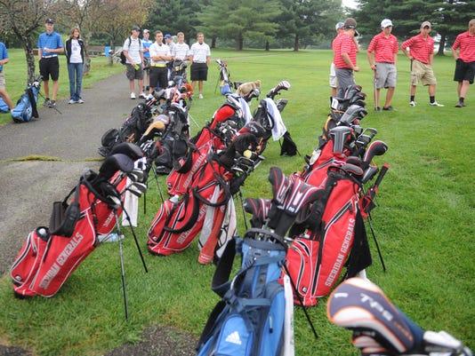 ZAN Dwindling golf.jpg