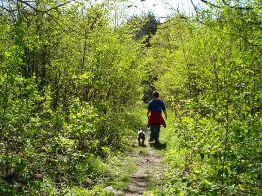 The Kettle Moraine State Forest is popular for camping, but also offers hiking and sightseeing during the off-season.