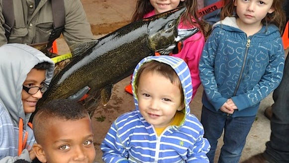 Saturday's open house at the Besadny Fisheries Facility is a great chance for kids to learn about the life cycle of the chinook salmon, a fish species of great importance to the economy of Kewaunee County.