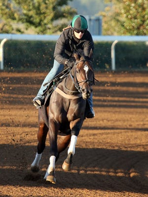 Frivolous working at Keeneland with trainer Vicki Oliver aboard.