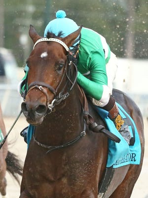 Trainer Keith Desormeaux's Exaggerator took Saturday's $1 million Delta Downs Jackpot.