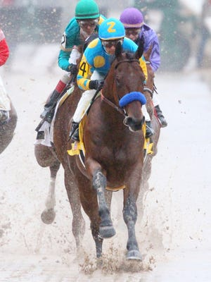 American Pharoah romped his last time out at Oaklawn Park, winning the Rebel Stakes.