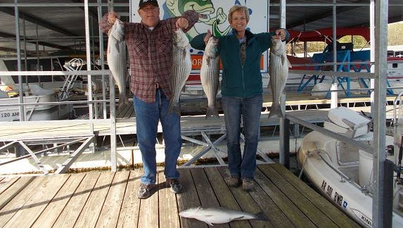 Tom Reynolds took Donna and John for a two day striper special. Here they show off their catch.In two days of morning fishing they had at least 20 strikes on big baits.