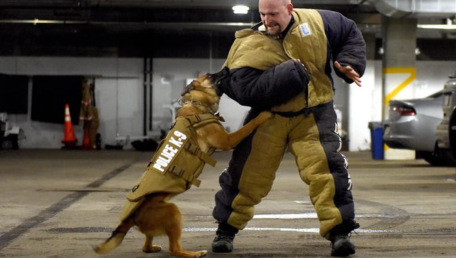 Deputy Justin DeBruin with the Sioux County's Sheriff's Department demonstrates an exercise with the Sioux Falls Police Department's K-9 officer, Doerak, at the Law Enforcement Center on Wednesday. The Sioux Falls Police Department received new bullet- and stab-protective vests for all four K9 officers last week.