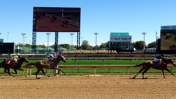 The 2-year-old filly I'm a Looker, shown winning her