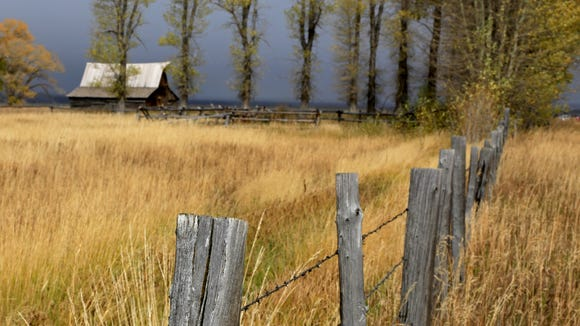 A fence leads toward T.A. Moulton Barn along Mormon Row in Wyoming's Grand Teton National Park.