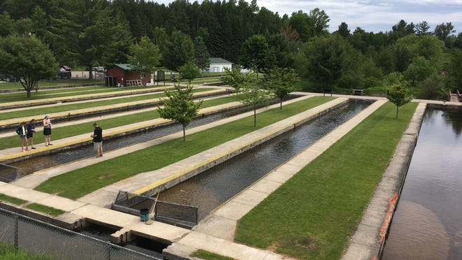 This June 9, 2018 photo shows the Grayling Fish Hatchery on the Au Sable River in Grayling, Mich. Under an agreement announced Sept. 27, 2018, Harrietta Hills Trout Farm LLC will shut down its commercial aquaculture operation at the hatchery and a sport fishing group called Anglers of the Au Sable will run it as a tourist attraction.