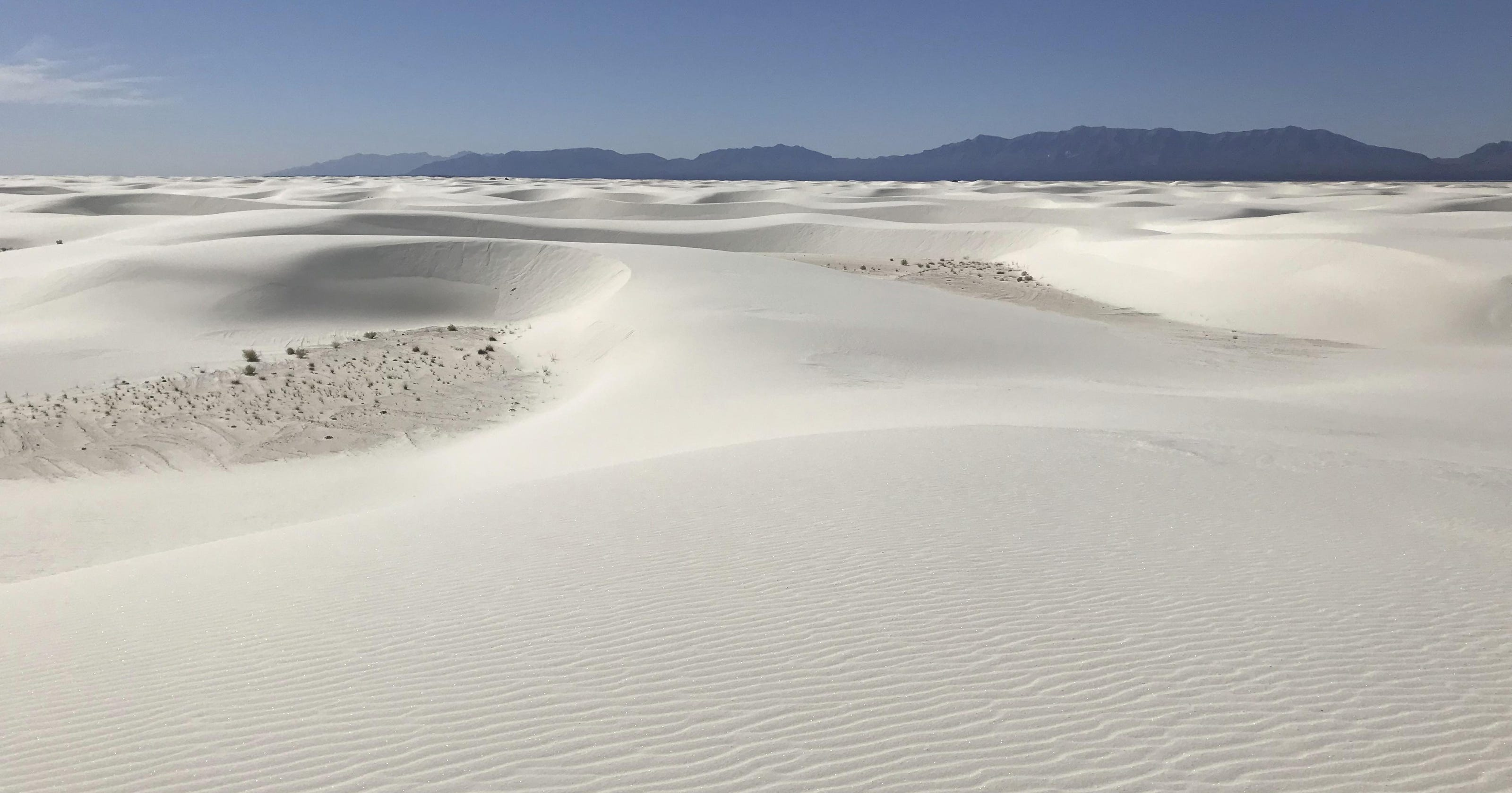 White Sands dust-up, distracted-driving cams, hog rules: News from around our 50 states
