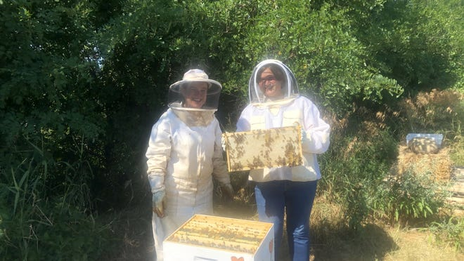 Sarah Meyer, left, owner of Worker's Ransom Honey in Geneva, is managing hives for the pollinator project on the site of the old Ontario County landfill. She is seen at the hives with Charlotte Love, environmental analyst with landfill operator Casella Waste Systems Inc., which is behind the project.