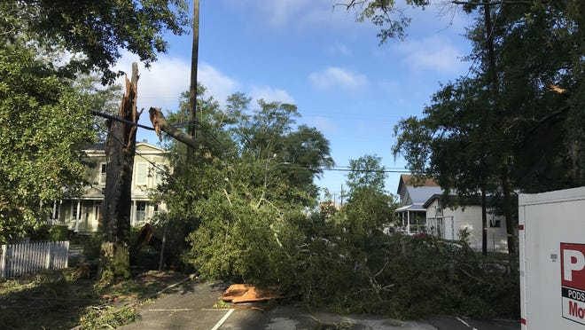 A downed tree hangs on the power lines at the corner of Sixth and Chestnut streets in downtown Wilmington from Hurricane Isaias.