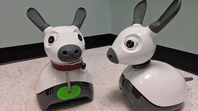 Miro-B, an an animal-like social robot, is 14 inches in height and was developed by Consequential Robotics.
