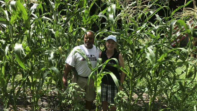 Darius and Kathy Thompson stand in their corn patch, part of their home vegetable garden.