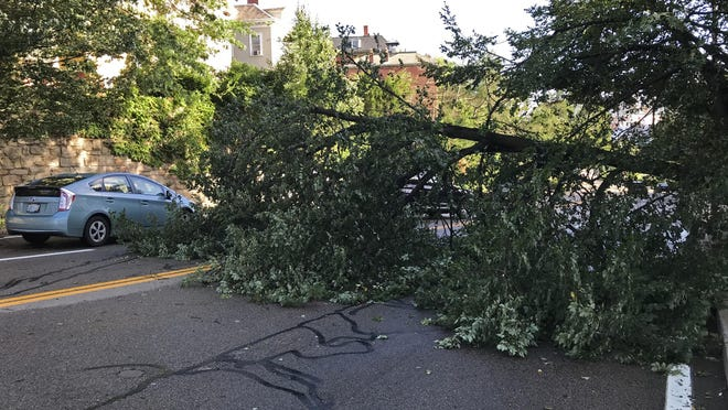 Drivers make their way around a tree that fell across North Main Street in Providence.