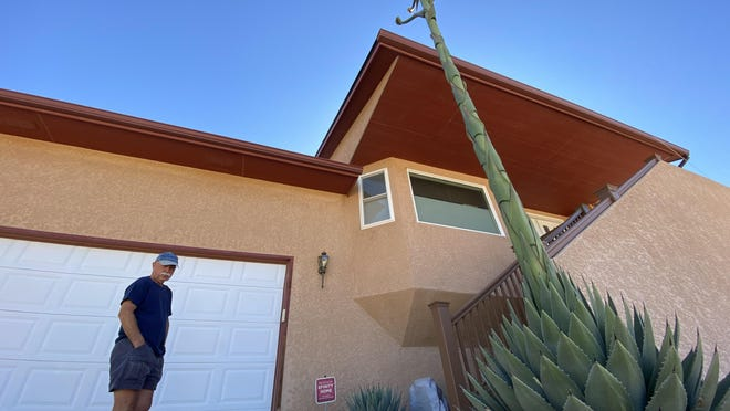 Mike Diehl, of Pueblo West stands next to a century plant (cactus) that has grown to more than 15 feet in his front yard.