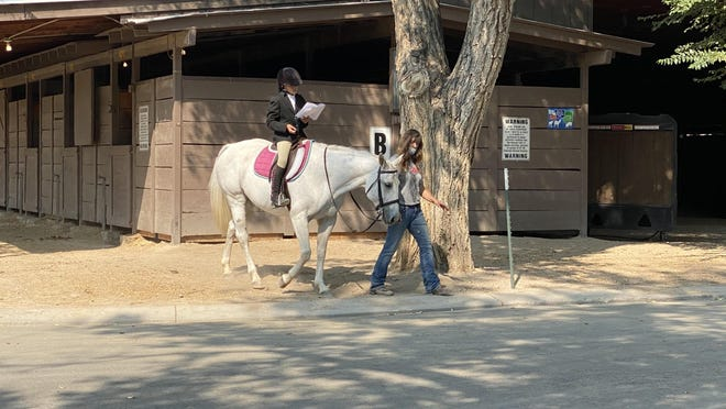 Jamie Manuelito walks her horse Mocha as her daughter Autumn Manuelito studies for her competition. The family is from Park County and Autumn was competing in an English horse competition on the last day of the Colorado State Fair.