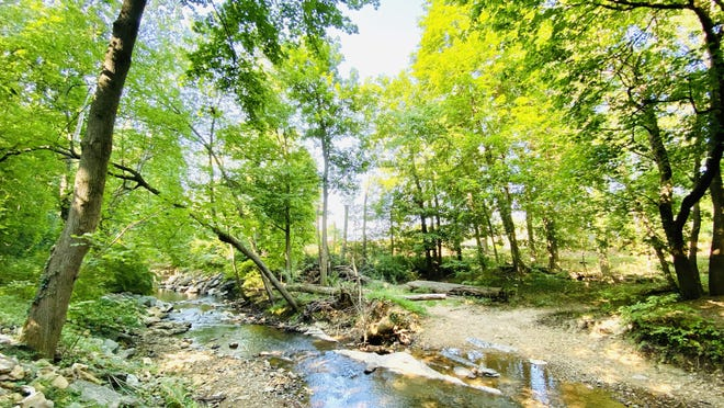 It's the perfect time of year to enjoy a cool nature walk along the Antietam Creek at Renfrew Museum & Park in Waynesboro. JOHN IRWIN/ THE RECORD HERALD