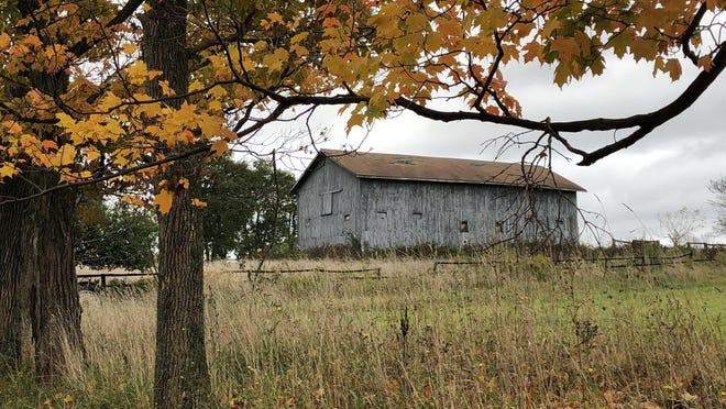 What will the fall foliage look like this fall, in East Bloomfield and other prime locations in the Finger Lakes?