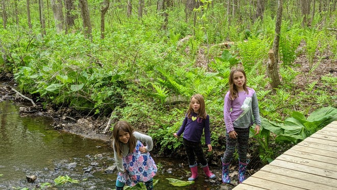 The Alonso girls splash in the stream at Nick's Woods. The family finished first in the Hike Worcester Challenge, sponsored by the Greater Worcester Land Trust.