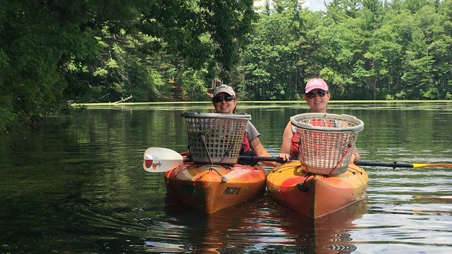 Trisha and Sierra Mullins, temporary seasonal NRWA staff, hand pull invasive water chestnut from the Nashua River.