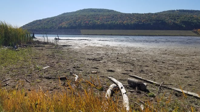 Expanses of mud flats emerge from the lake at the Almond Dam, uncovering driftwood and debris.