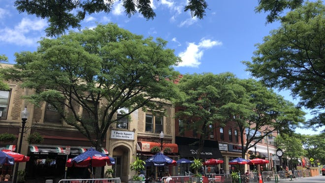Outdoor dining in Davis Square over the summer.
