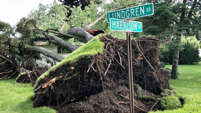 An uprooted tree fell on top of a house on Tuesday, June 9, 2020, near the corner of Lundgren Road and Harrison Avenue in south Rockford.