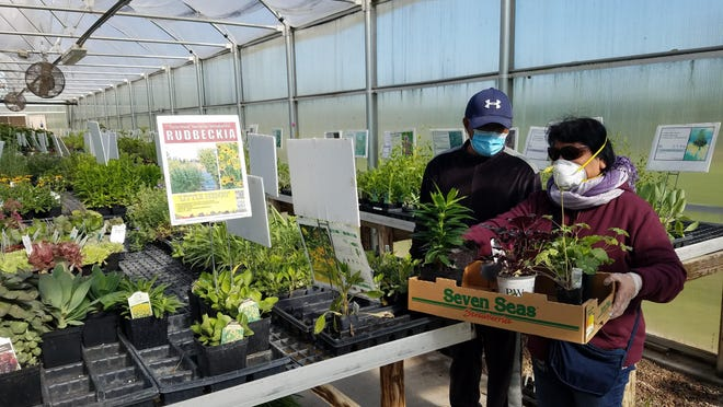 Kansas gardeners shopped at FloraKansas in May of this year while observing physical distancing and masking policies.