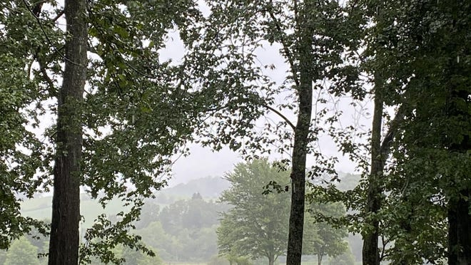 The National Weather Service has issued a hazardous weather outlook for Henderson County and the region today.
