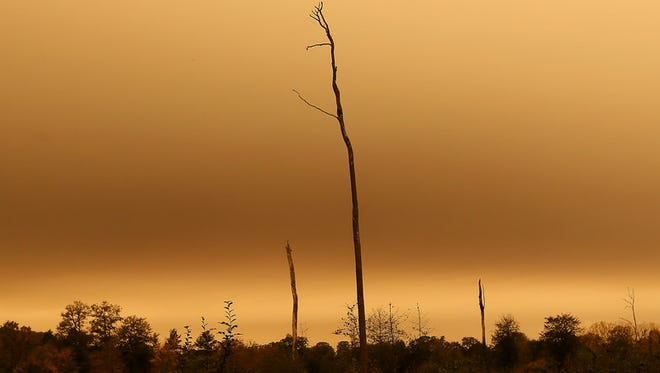 The sky turns orange and yellow in Brittany last month in Chasne-sur-Illet, western France. The sky in France's Brittany region turned yellow as nearby Ophelia storm brought a mix of sand from Sahara and particles from Spain and Portugal's forest fires over the region. The storm later brought high  winds to Ireland and the United Kingdom.