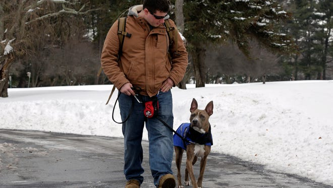 Former U.S. Marine Joe Bonfiglio, 24, and his pit bull assistance dog, Zen, walk on the campus of Mercy College, in Dobbs Ferry, NY, Wednesday, Feb. 4, 2015. Zen has allowed Bonfiglio, 24, who was diagnosed with post-traumatic stress disorder, to get back to everyday activities.