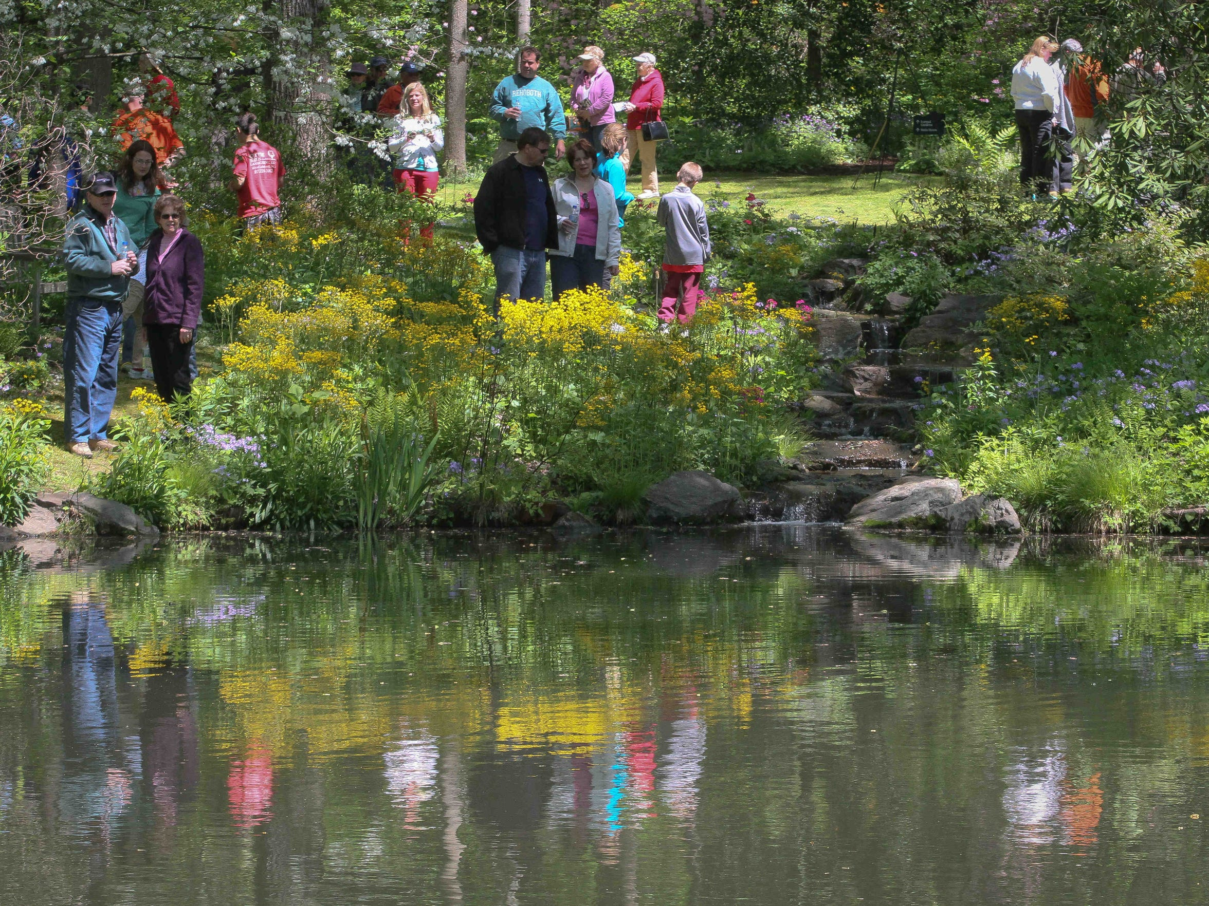 The annual Wildflower Celebration returns to Mt. Cuba this Sunday.