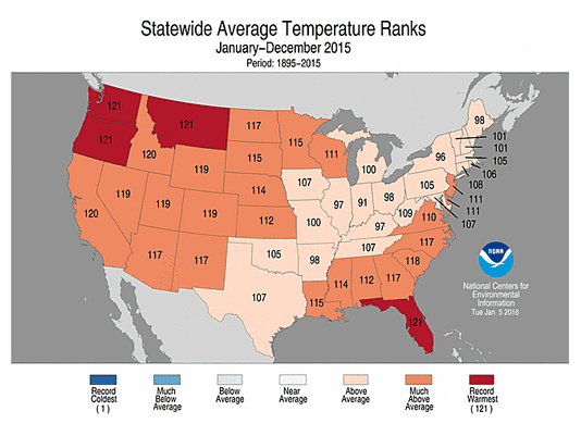 2015 one of USA's warmest, wettest years