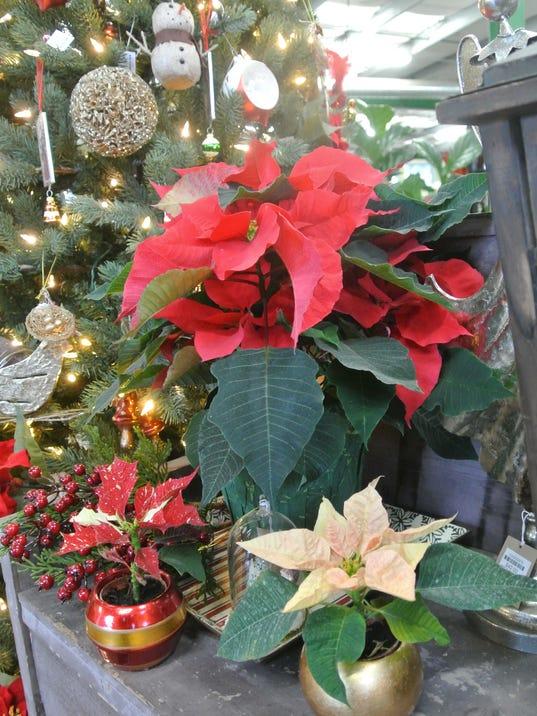 Master Gardener: Holiday host gift ideas