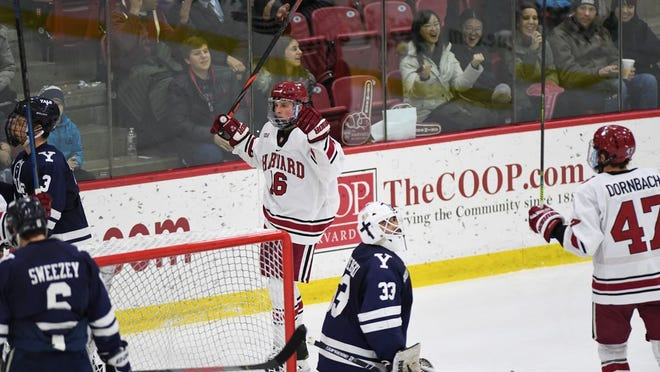 Slate Hill's Nick Abruzzese, of Harvard, celebrates a goal against Yale on Feb. 14, 2020.