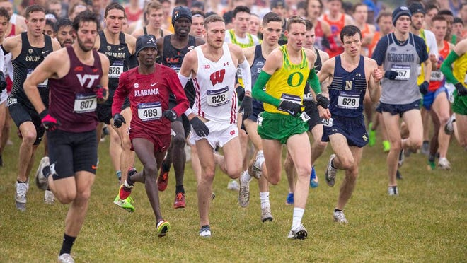From Nov. 23, 2019, runners compete in the men's NCAA Division I Cross-Country Championships in Terre Haute, Ind. Four-year colleges facing budget shortfalls stemming from the coronavirus outbreak have eliminated a total of nearly 100 sports programs since March.