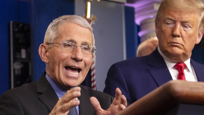 National Institute for Allergy and Infectious Diseases Director Dr. Anthony Fauci speaks during a press briefing with President Donald Trump about coronavirus, at the White House in February.