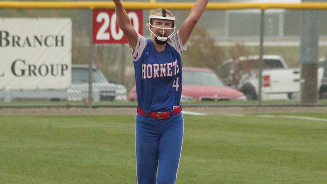 Atlanta second baseman Kolbey Watson cheers after the final out of last year's district title game against Schuyler County.