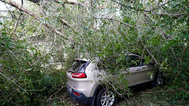 A car is covered in branches in the aftermath of Hurricane Sally, Friday, Sept. 18, 2020, in Pensacola, Fla.