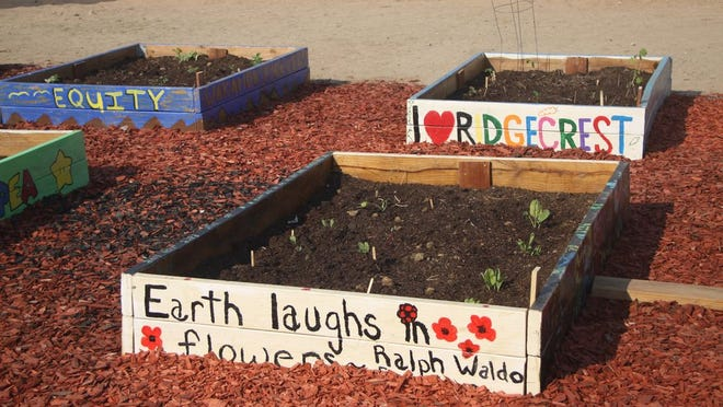 The beginnings of the Ridgecrest Community Garden are seen on a recent day at its new location on West Haloid Avenue.