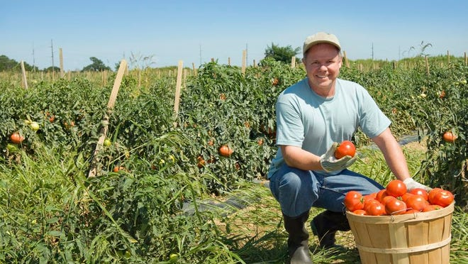 The deadline to submit applications for the Organic Certification Cost Share Program is Dec. 1, 2020. The Department has funding available to assist Missouri farmers and food processors in obtaining organic certification for their businesses.