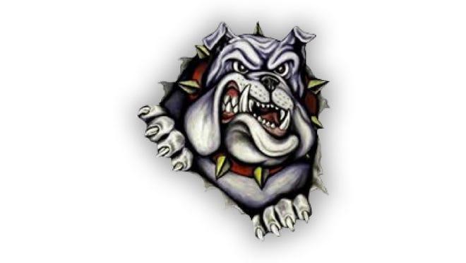 Summerfield schools logo
