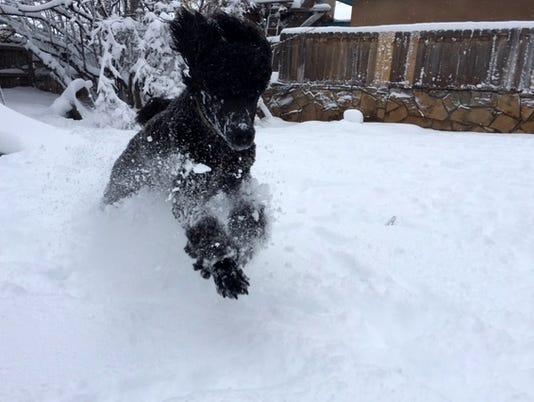Snow in Carlsbad