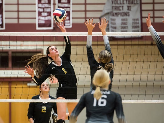 Delone Catholic's Maddie Clabaugh hits the ball over
