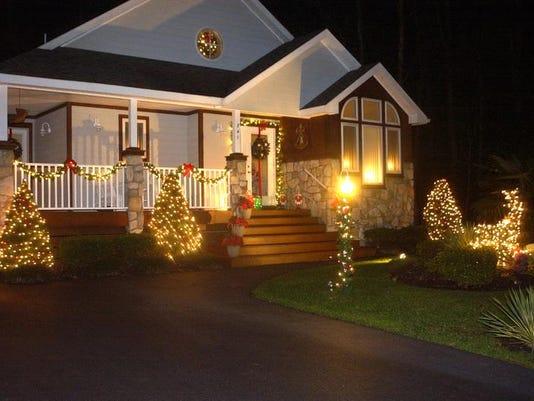 pines lights.jpg